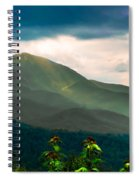 Emerald And Gold Spiral Notebook