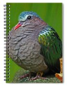 Emerald Ground Dove Spiral Notebook