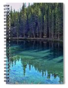 Emerald Mountain Pond Spiral Notebook