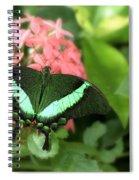 Emerald Swallowtail Spiral Notebook
