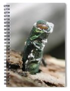 Emerging Ash Borer With Fungus Spiral Notebook