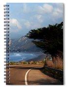 Emma Wood State Beach California Spiral Notebook
