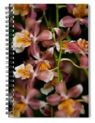 Emma's Orchid Spiral Notebook