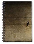 Emotional Distance Spiral Notebook