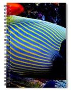 Emperor Angelfish Spiral Notebook