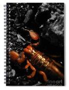 Emperor Scorpion 2.0 Spiral Notebook