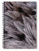 Emu Feathers Spiral Notebook