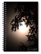 Enchanted By Moonlight Spiral Notebook