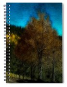Enchanted Evening In The Forest Spiral Notebook