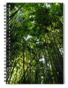 Enchanted Forest Haleakala National Park Spiral Notebook