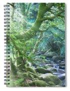 Enchanted Leprechaun Forest Spiral Notebook