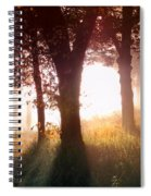 Enchanted Meadow Spiral Notebook