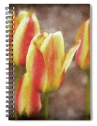 Enchanting Muted Spiral Notebook
