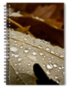 End Of Season Spiral Notebook