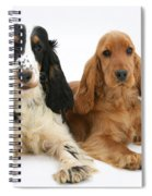 English Cocker Spaniels Spiral Notebook