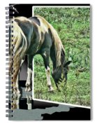 Enter Another Zone Spiral Notebook