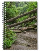 Entrance To Fern Canyon Spiral Notebook