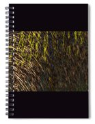 Eris - Macro1 Spiral Notebook