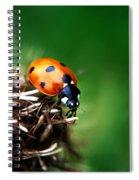 Es Oh El Oh Spiral Notebook