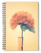 Estillo - 01i2 Spiral Notebook