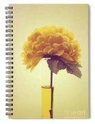 Estillo - S03-y01r Spiral Notebook