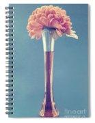 Estillo Vase - S01v3f Spiral Notebook