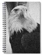 Etched Eagle Spiral Notebook
