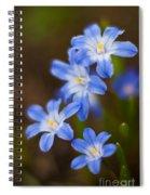 Etoiles Bleus Spiral Notebook