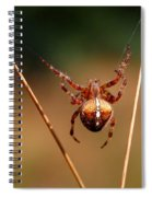 Hanging Tough Spiral Notebook