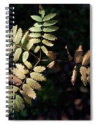 European Rowan Spiral Notebook