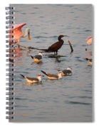 Evening Activity In The Bay Spiral Notebook