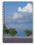 Evening In Provence Spiral Notebook