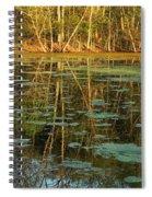 Evening Light On Missouri Pond 2 Spiral Notebook