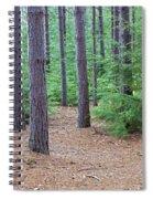 Evergreen Forest Spiral Notebook