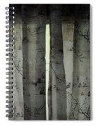 EVP Spiral Notebook