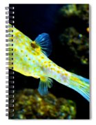 Exotic Fish Spiral Notebook