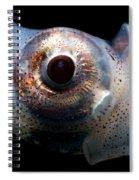 Eye Flash Squid Spiral Notebook