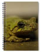 Eye To Eye Spiral Notebook