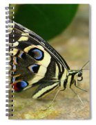 Eye To Eye With A Butterfly Spiral Notebook