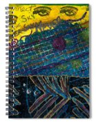 Eyes In The Sky Spiral Notebook