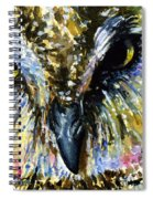 Eyes Of Owl's 13 Spiral Notebook