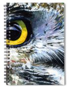 Eyes Of Owl's 19 Spiral Notebook