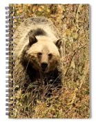 Eyes On You Spiral Notebook