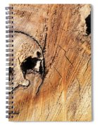 Face In The Wood Spiral Notebook