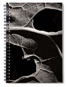 Facial Foliage Spiral Notebook