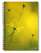 Faded Dreams Spiral Notebook