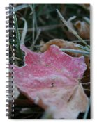 Faded Summer Spiral Notebook