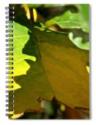 Fading Into Fall Spiral Notebook