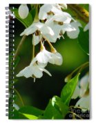 Faerie Bells 2 Spiral Notebook