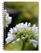 Faintly Lavender Spiral Notebook